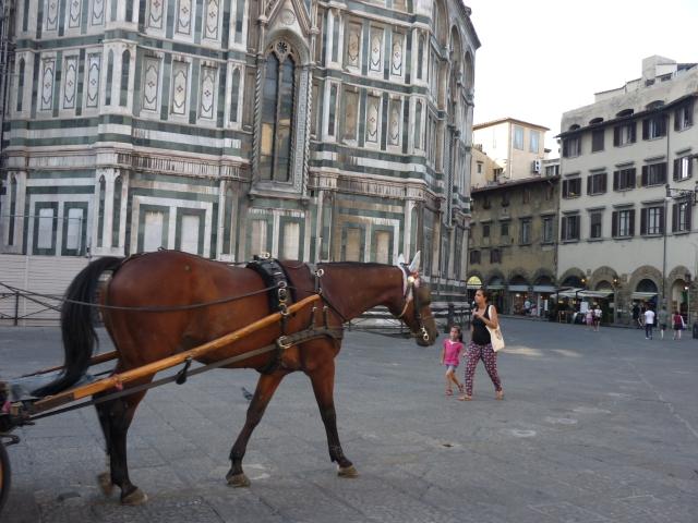 horse italy